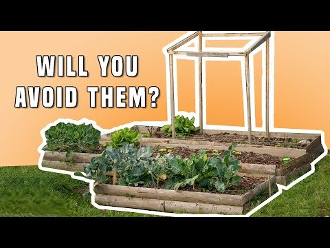 9 STARTING MISTAKES | Square Foot Gardening In Raised Beds (Do You Want To Avoid Them?)