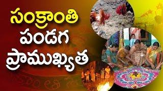 సంక్రాంతి పండగ  ప్రాముఖ్యత     Importance of Sankranti  Festival