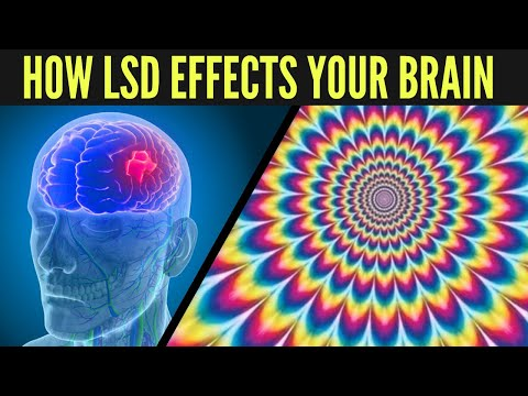 How LSD Affects Your Brain! (The Science Of Tripping)