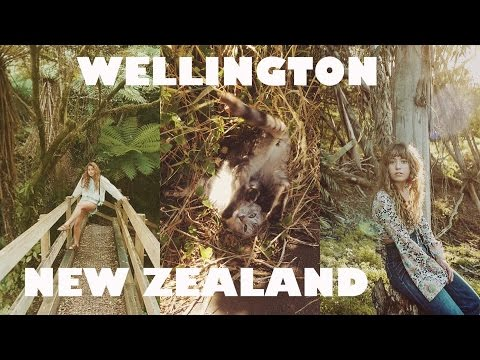 WELLINGTON, NEW ZEALAND // travel diaries no.2