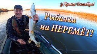 р.Чулым! Проверка ПЕРЕМЁТА! Рыбалка на Перемёт!