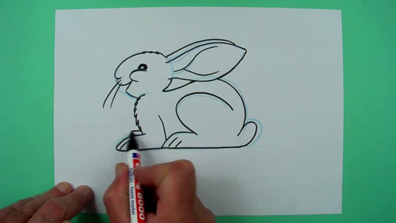 Wie zeichnet man einen hockenden hasen zeichnen f r kinder youtube - Hase zeichnen ...
