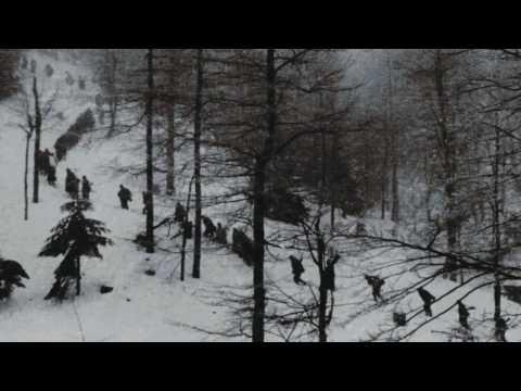 Šume, šume najljepša vam hvala - Partizanska pjesma
