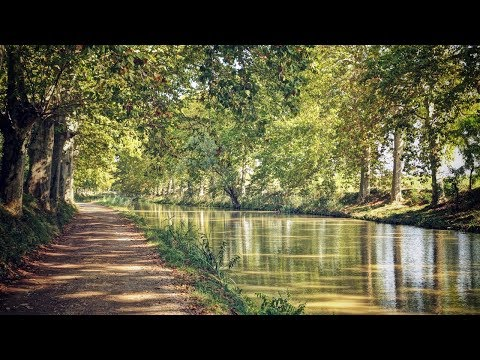 Hotel Barge Cruises on the Canal du Midi in Southern France | European Waterways