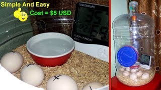 DIY - Hatching Egg Incubator Simple And Easy || Homemade Incubator thumbnail