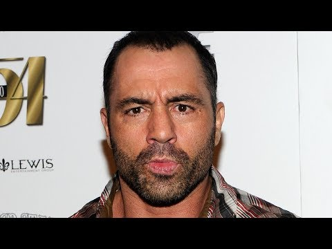 The Untold Truth Of Joe Rogan