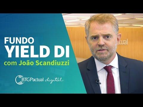 Fundo BTG Pactual Yield DI: o que é, rentabilidade, liquidez e mais