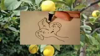 How to Draw Poison Ivy - Drawing Dynamics - EP 17 SE2