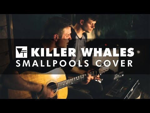 Vinyl Theatre: Killer Whales (Smallpools Cover)