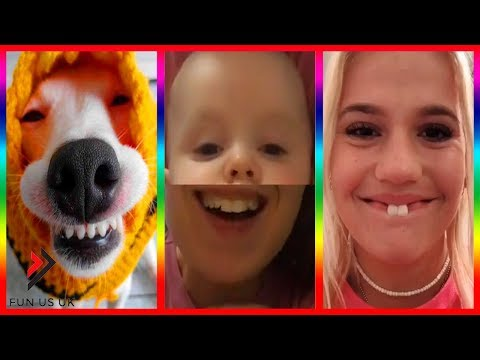 Tik tok 2019 ... Latest funny videos ? Try Not To Laugh Challenge ? #59