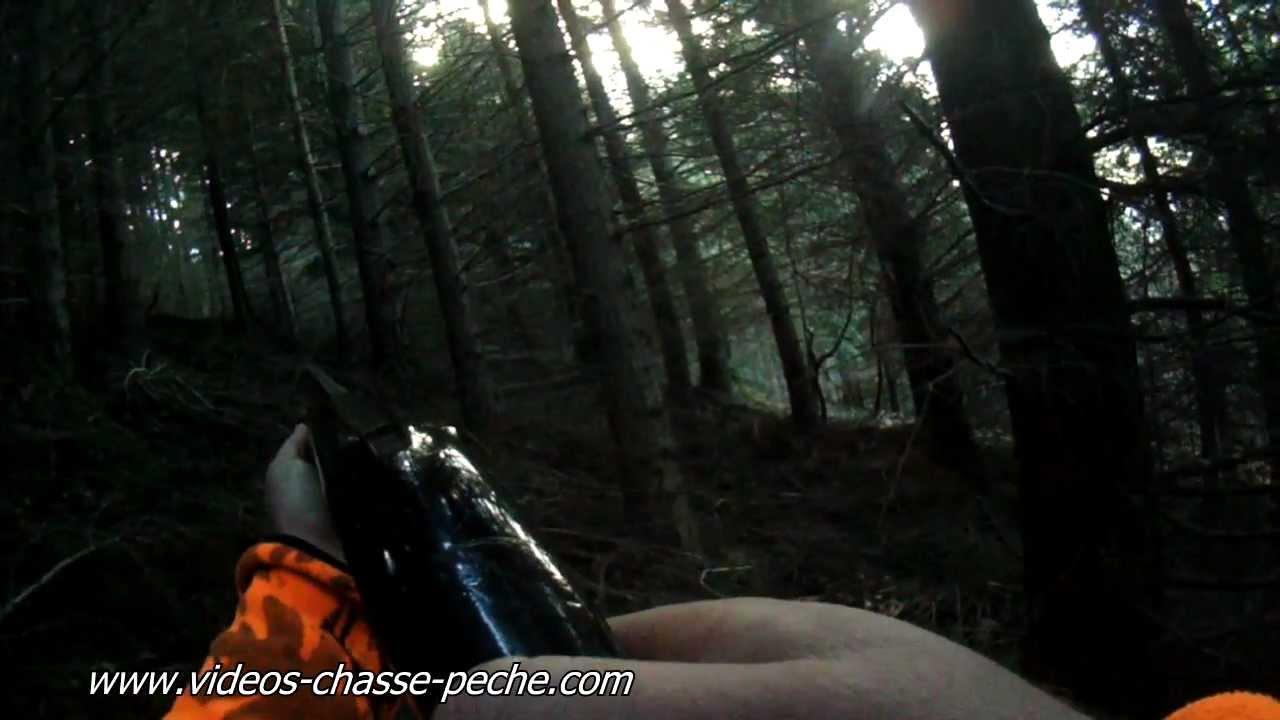 5ec3bc6ca2d0ec 2 sangliers tirés en battue - Lunettes caméra Natureye - Boar hunting