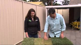 Easy Lawn Installation - Choosing Lawn 1/5 - In the Garden with Kim Syrus - S2 Ep 06