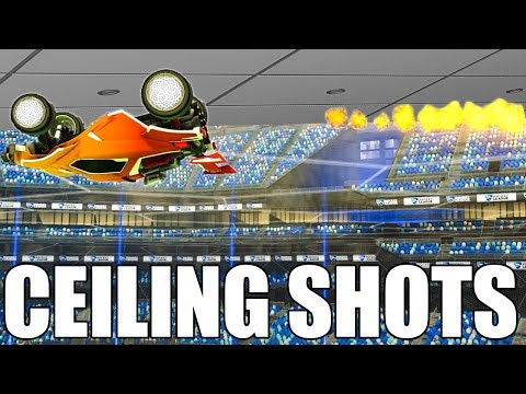 I TRY TO BEAT A PRO WHO CAN ONLY TAKE SHOTS FROM THE CEILING