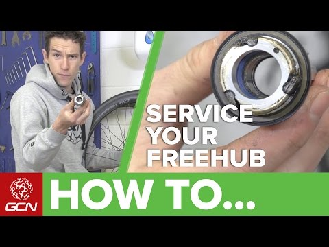 How To Service Your Road Bike Freehub