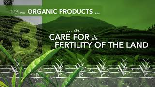 2020 TEEKANNE Sustainability Organic Products