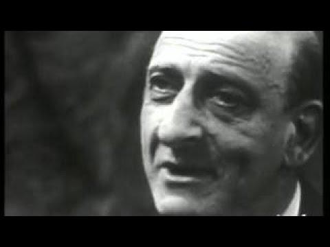Raymond Aron La société industrielle et la guerre
