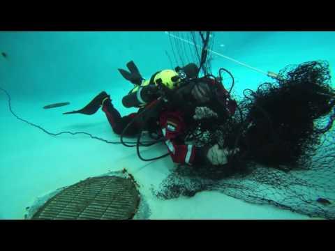 ERDI Skills Dive Paralenz Camera