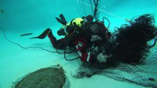 Video ERDI Skills Dive #Paralenz Camera download MP3, 3GP, MP4, WEBM, AVI, FLV Juli 2017