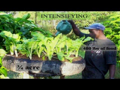 Mark Hare - FONDAMA Yard Garden Program