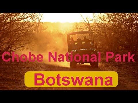 Botswana Chobe National Park (II)