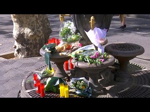 Dozens lay flowers for Barcelona terror attack victims