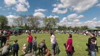 Appledown Dog Rescue Open Day VR 180