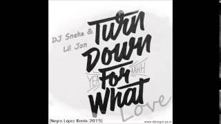 DJ Snake & Lil Jon Ft. Negro López - Turn Down For What Love (Mashup 2015)