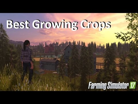 Best Growing Crops on Farming Simulator 17 per Hectare (Ha) 2017