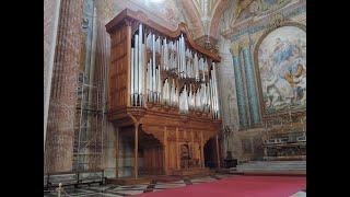 パイプオルガンによる教会のミサ