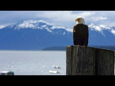 Alaska Doku