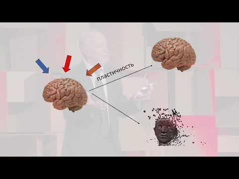 Почему антидепрессантов недостаточно для борьбы с депрессией?   Aleksandr Zarkovski   TEDxLasnamäe