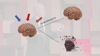 Почему антидепрессантов недостаточно для борьбы с депрессией? | Aleksandr Zarkovski | TEDxLasnamäe
