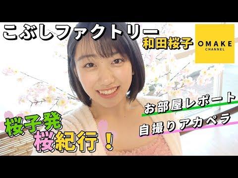 こぶしファクトリー和田桜子《桜子発!桜紀行》写真集撮影編