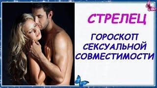 Гороскоп секс совместимости Стрельца с другими знаками Зодиака Партнеры Стрельца Гороскоп Стрелец