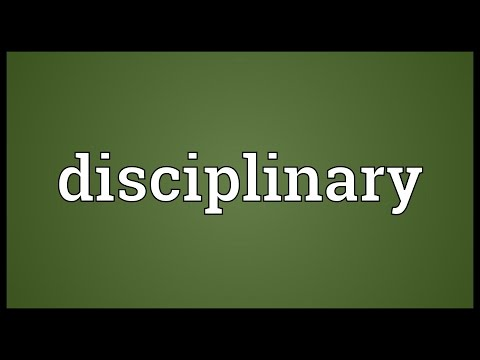 Disciplinary Meaning
