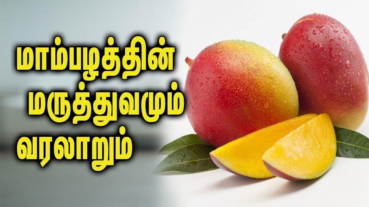 autobiography of mango