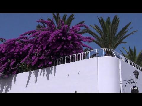 Tunisia - Sidi Bou Said