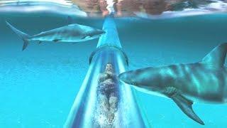 World's 15 Greatest Water Slides