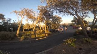 30km Training Run For Canberra Marathon - Sunday 8th February 2015