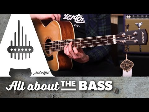 Start a Band by the Campfire! - Alvarez Acoustic Bass and Baritone Acoustic