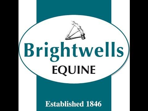 The Brightwells 'December Elite' Auction