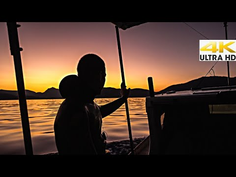 Looking for Gold in Clear Blue Water👑Dentex the Queen of Gold |Spearfishing Life 🇬🇷 [4K]✅