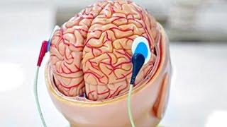 10 СПОСОБОВ СТАТЬ УМНЕЕ(Топ 10 вещей которые надо делать чтоб прокачать свой мозг. Автор Вконтакте - https://vk.com/id206285614 Группа - https://vk.com/sli..., 2015-09-14T12:55:49.000Z)
