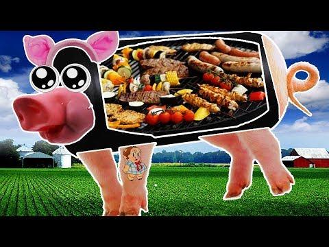 DIY Potbelly Pig BBQ - Pt 1