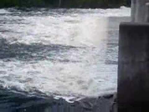 Barryton Dam