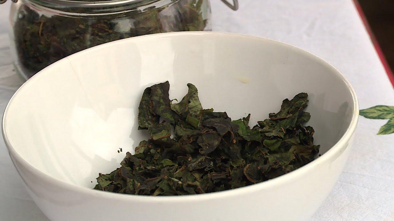 Приготовить чай из иван чая в домашних условиях 123