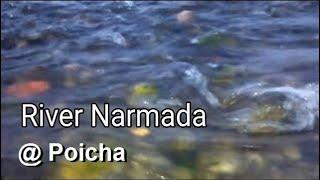River Narmada, Poicha