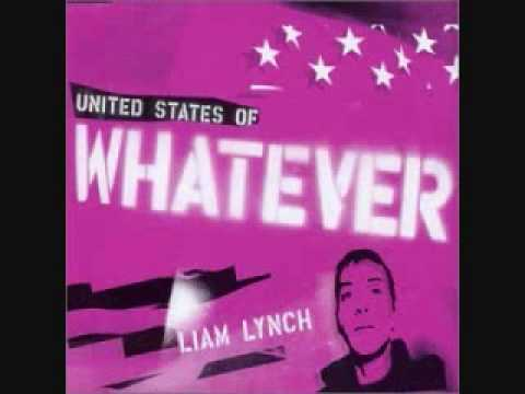 My united states of whatever by Liam Lynch