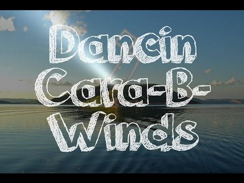 Dancin Cara-B-Winds - UpBeat Caribbean X Pop X Hip Hop Instrumental type beat 2017 - Resonant Beats