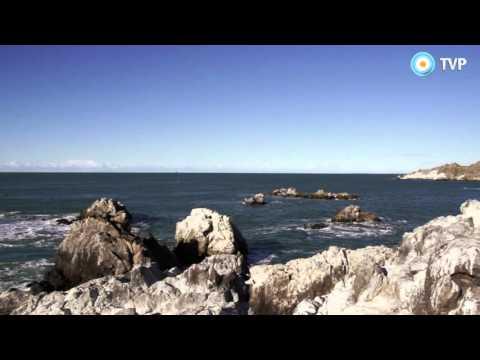 Atlantico Sur - Capítulo 8: Puerto deseado